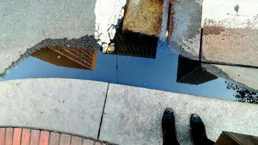 San Francisco in a puddle